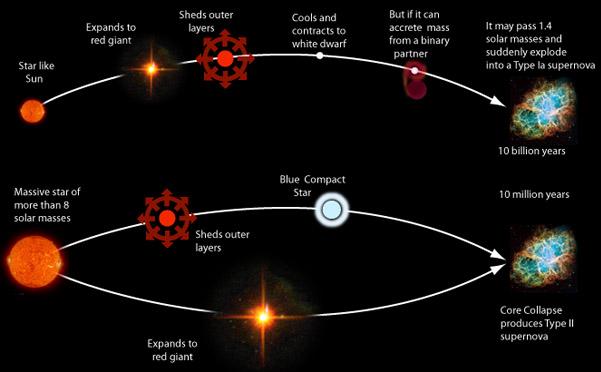 astro268 / Type II Supernovae